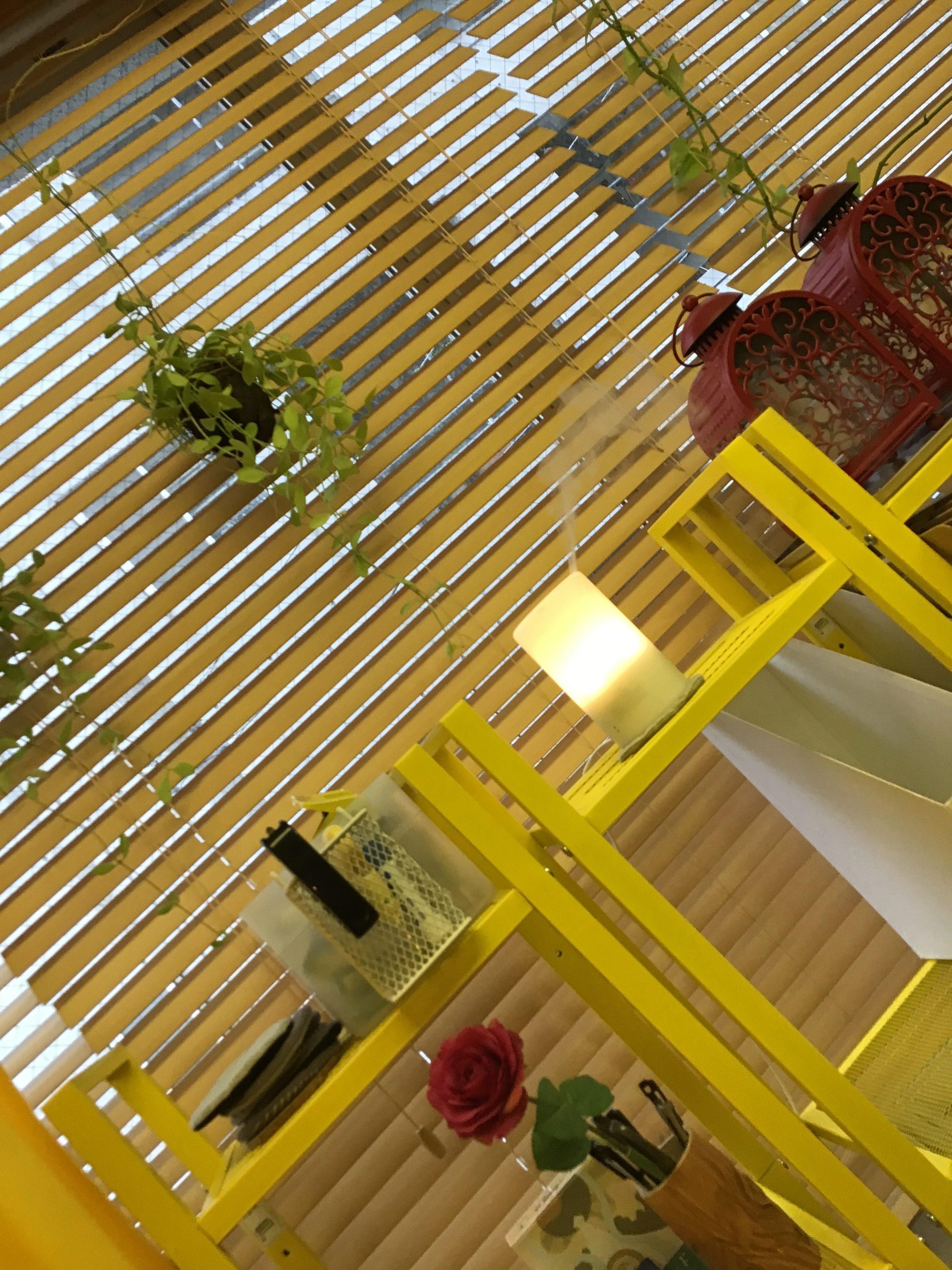 足ツボの部屋♪〜福岡で世界一痛い足ツボ!はOFFTOOON(オフトン)〜